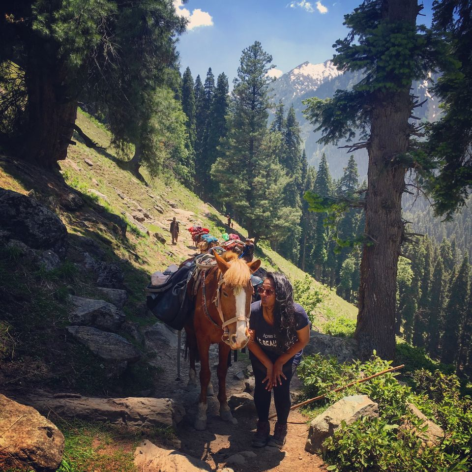 Photos of My Story of How I Failed On the Easiest Trek in Kashmir 1/1 by Kanika Gupta