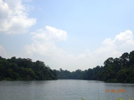 Photos of MacRitchie Reservoir Singapore 3/8 by Prahlad Raj