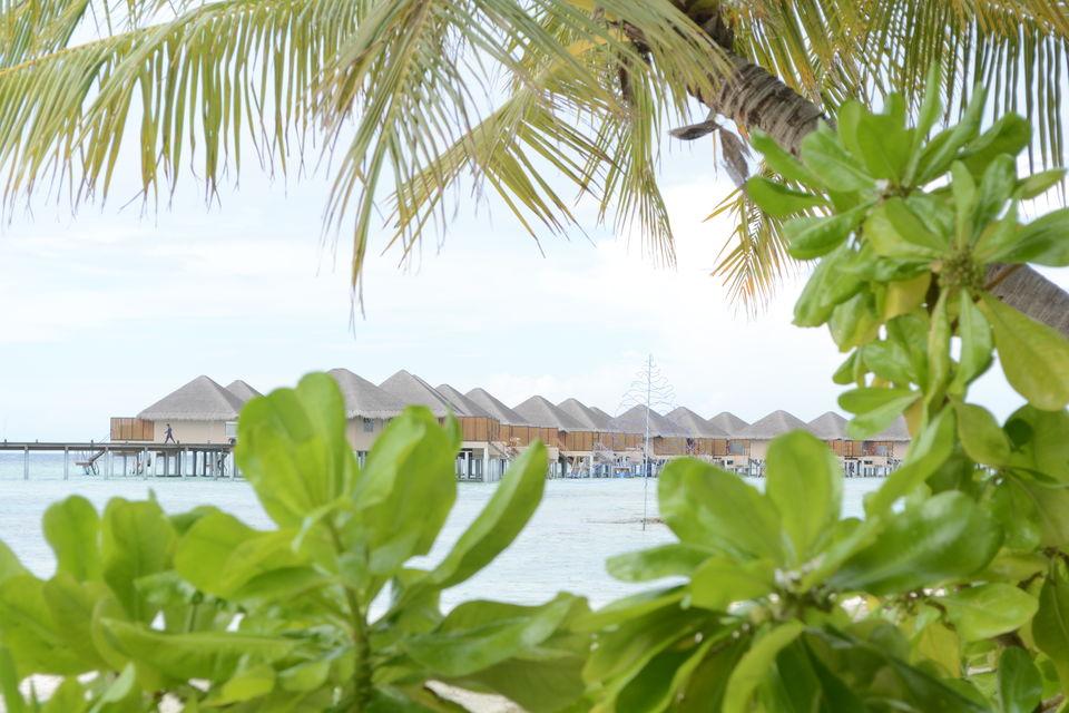 Photos of Maldives 1/1 by Sonam Singh