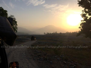 Tranquillity Gets Synonym In Pawalgarh Conservation Reserve Of Corbett