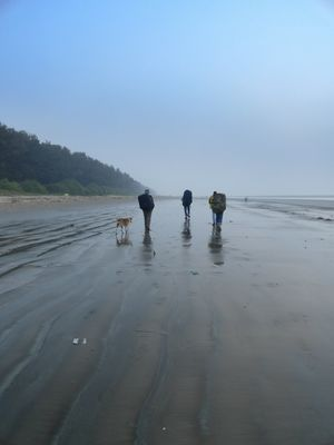 A Walk To Remember along the Coasts