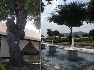 Jagmandir Island Palace 1/4 by Tripoto