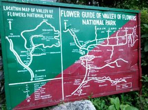 Quick escape to Mana/Badrinath/Valley of flowers