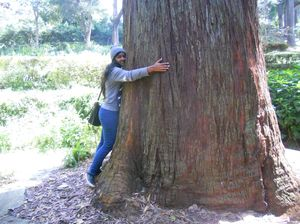 In love with ooty