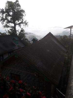 Nagaland - unexplored paradise!