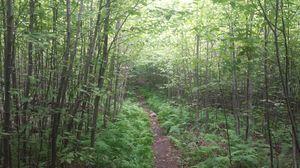 Hudson Valley Hiking