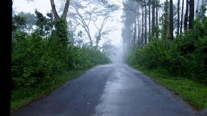 Through the mystic roads of Coorg