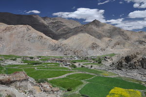 Secrets of Ladakh: A Cutural Tour