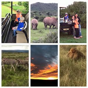 South Africa: Cape to Cape self drive family vacation