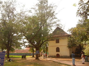 What to do in Kochi or Cochin?