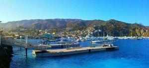 Tiana's Perfect Day on Catalina Island
