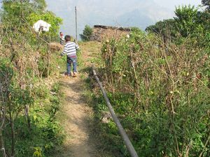 Explore the other side of Nainital-Farms & Homestays