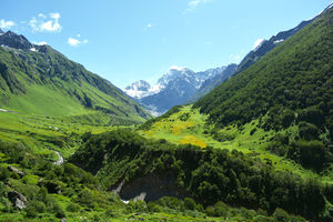 First trek in Himalayas:Trip to Valley of flower and Hemkund Sahib