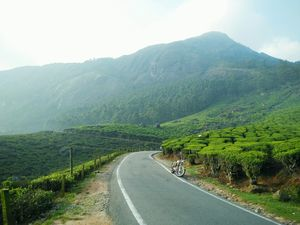 Bike Ride - Munnar