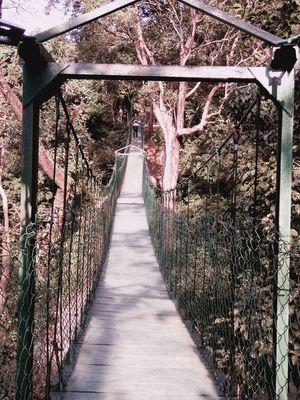 Valmiki Nagar Tiger Reserve- Unexplored Haven