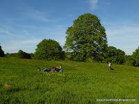 Hampstead Heath 1/1 by Tripoto