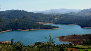 The Definitive List Of Things To Do In Ooty Amidst The Blue Mountains