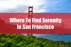 Where to Find Serenity in San Francisco
