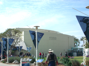 Aquarium of the Pacific 1/1 by Tripoto