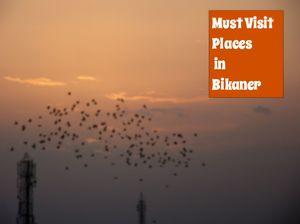 Backpacking in Bikaner