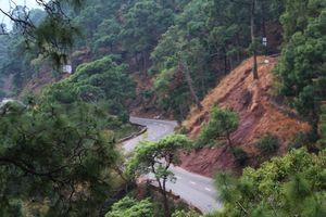 Climbing To The Peak Of Shimla: Jakhu Peak