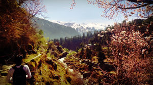 Solo Backpacking in kullu valley