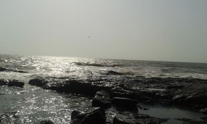 Mumbai: In ONE day