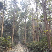 Dudhwa National Park 2/34 by Tripoto