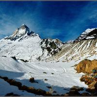 Gangotri National Park 3/3 by Tripoto