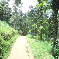 Banasuramala Meenmutty Waterfalls 2/7 by Tripoto
