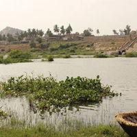 Tungabhadra River 3/5 by Tripoto
