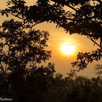 Bandhavgarh National Park 5/10 by Tripoto