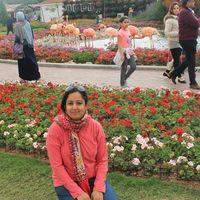 Sreedevi Jeevan Travel Blogger