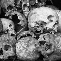 Killing Fields 2/3 by Tripoto
